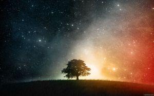 tree_and_stars