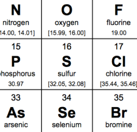 IUPAC says sulfur, and what they say goes