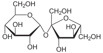 Saccharose2